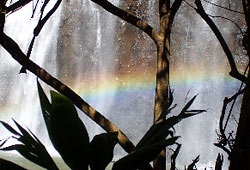 water rainbow