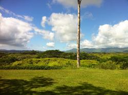 land-view